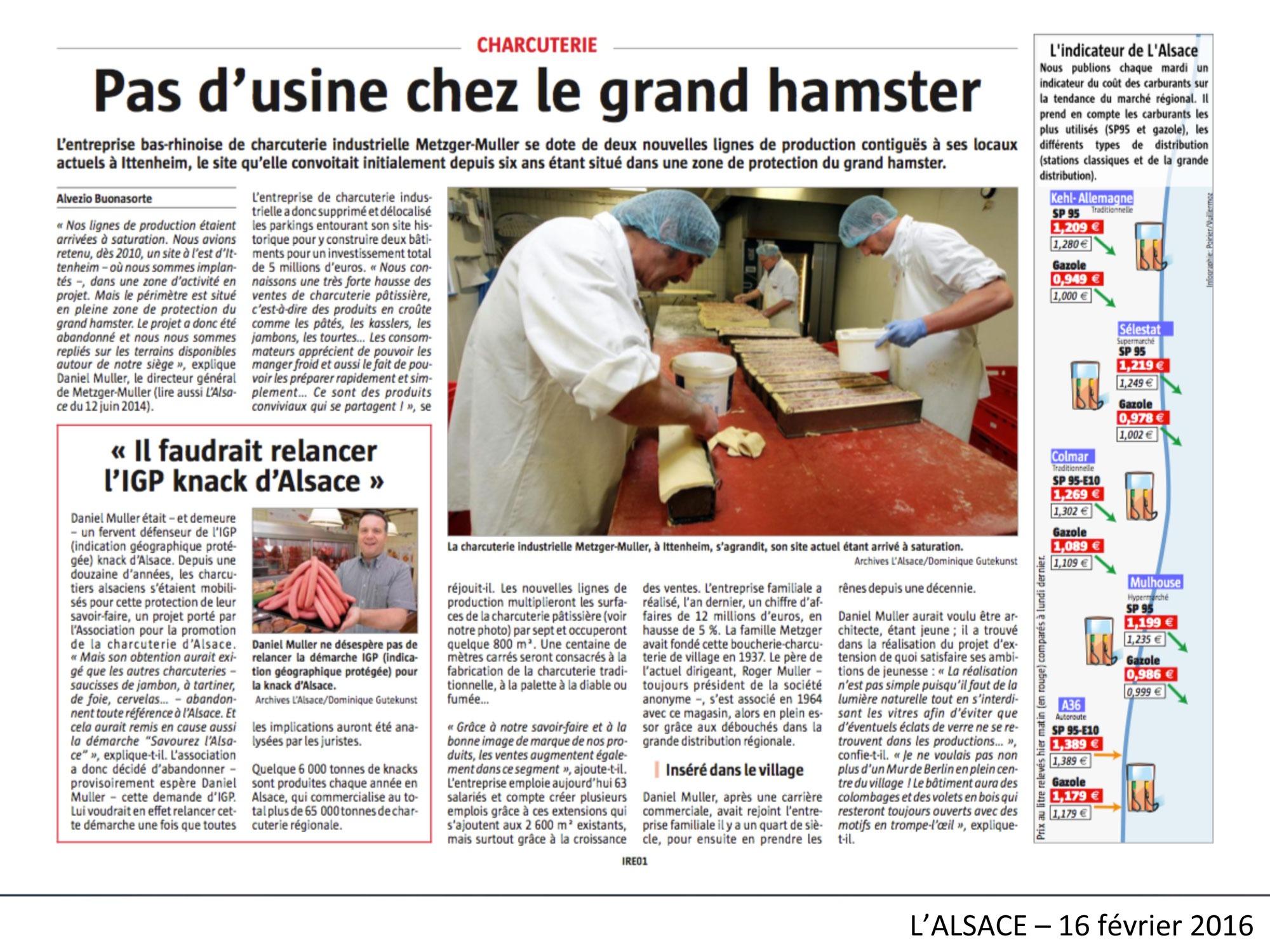 Pas d'usine chez le grand hamster L'Alsace-160216